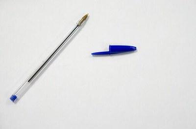 É falso que eleitor que não levar caneta não poderá votar